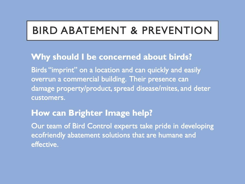 Bird Abatement and Prevention