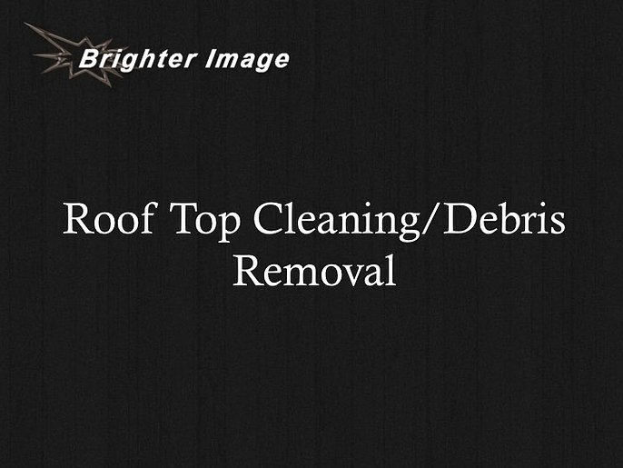 Roof Top Cleaning / Debris Removal