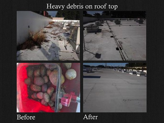 Roof / Gutter Inspection & Cleaning